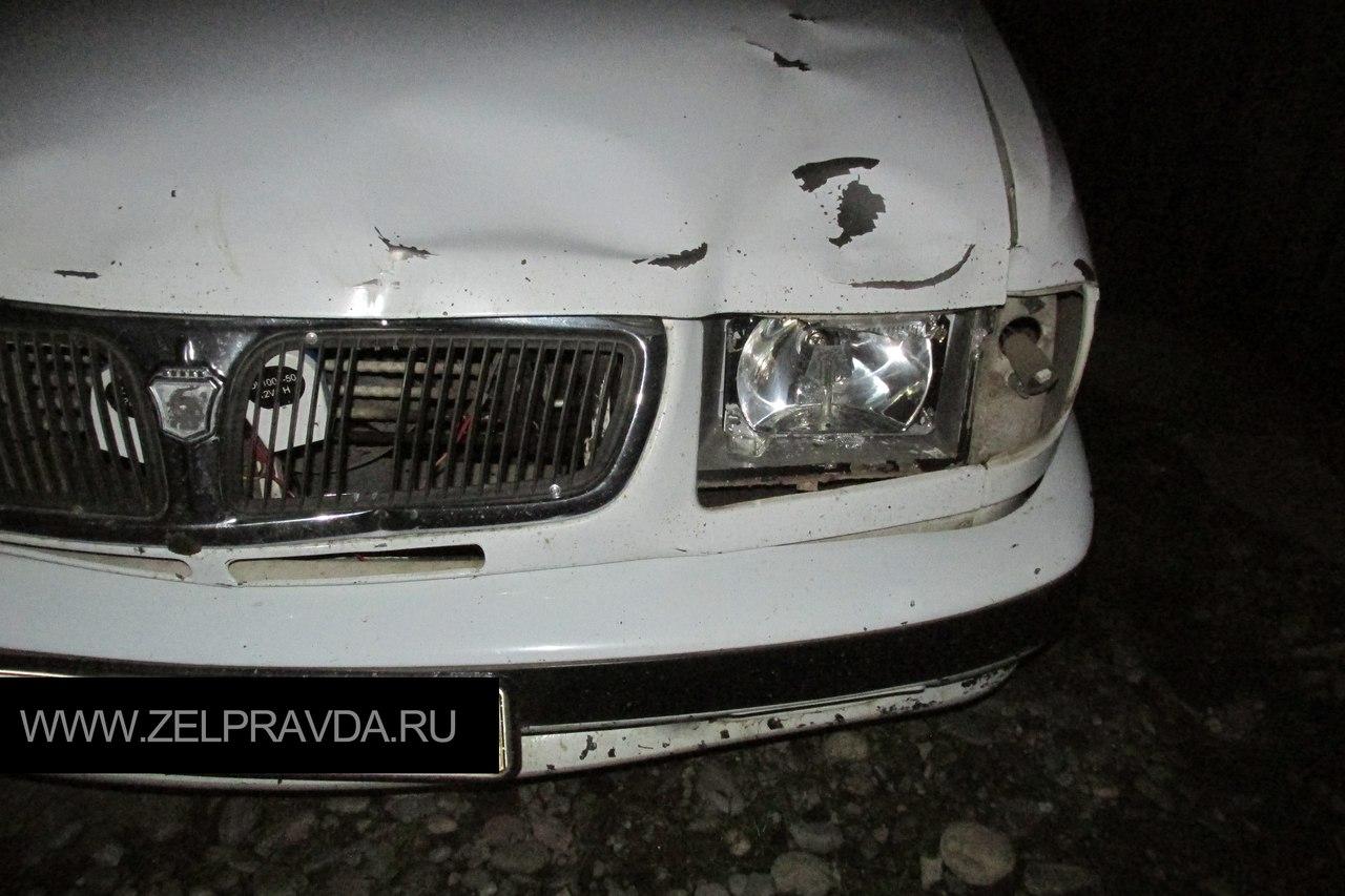 На въезде в Зеленчукскую столкнулся автомобиль с гуляющим КРС