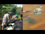 Law of the Jungle 150828 Episode 176