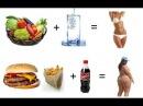 Как вести здоровый образ жизни Как оставаться здоровым очень долго, до старости