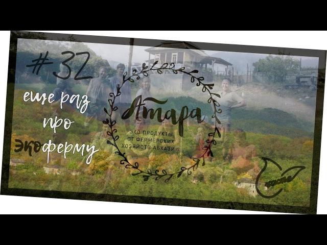 Экоферма Абхазия | Фрукты из экопоселения Андрей_Счастье сыроедение фрукторианство raw
