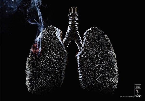 Привет, с вами Владимир! На этот раз хочу поделиться о том, как я бросил курить за 7 дней.