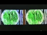 XGIMI Z4 Aurora VS BYINTEK MD306ST Projector