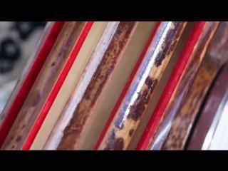 Индонезия. Калимантан - золотые прииски. Бали - бои сверчков. 14 серия - Мир Наизнанку - 5 сезон