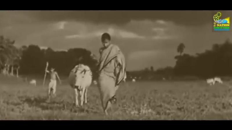 Сатьяджит Рей. ПЕСНЬ ДОРОГИ (трейлер). 1955