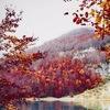 Путешествия | Природа