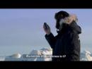 Наблюдение за китами. 4 серия 2 сезон Идиот за границей