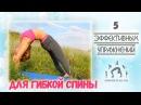 5 Эффективных упражнений для ГИБКОЙ СПИНЫ