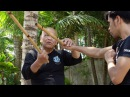 FIGHTING STICKS OF ARNIS Trailer by Empty Mind Films