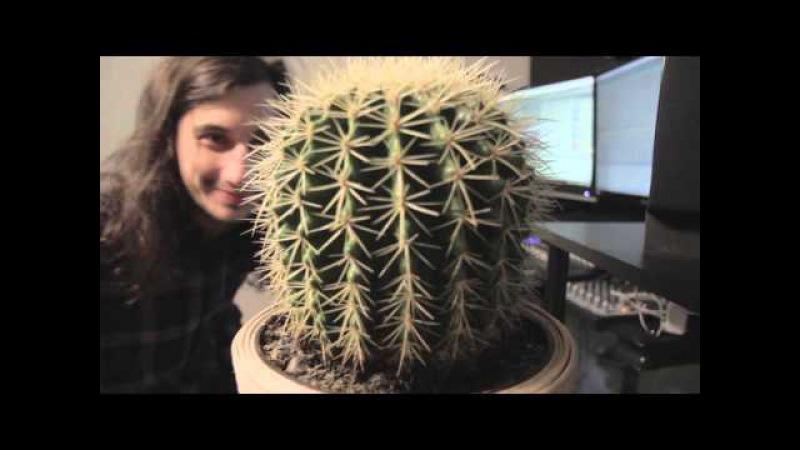 Gourski - Springtime [Cactus Meets DrumBass]
