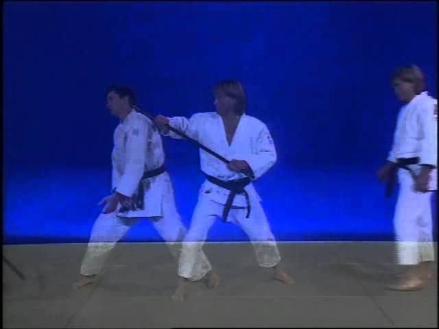 Ju jitsu traditionnel Techniques de base