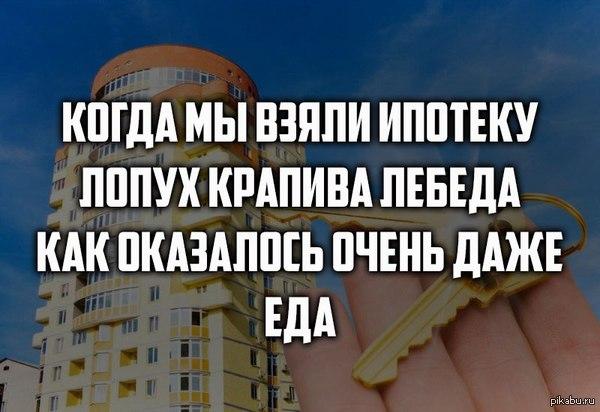 https://pp.vk.me/c604329/v604329427/b95a/rzuOAfAfFtU.jpg