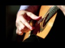 Marco Pereira Bate Coxa Fabio Zanon guitar