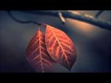 Already Gone (Original Mix) - Easton &amp Christina Novelli