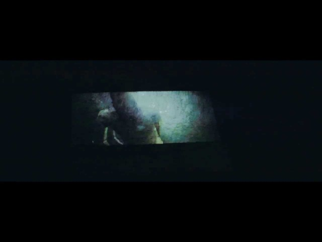 The Catharsis Natural Decline Official Music Video