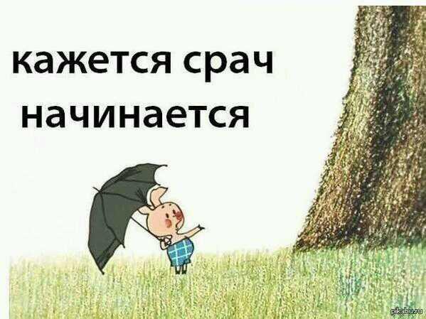 https://pp.userapi.com/c604330/v604330655/3c80/Nn194yY2D2U.jpg