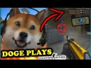 WHEN DOGE PLAYS CSGO 4! Best Of TheOneManny Best of DOG, Stream, Fails, Rage Funny Moments