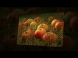 Яблоневый спас  Юрий Лорес