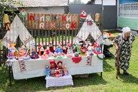День малого села в Скопинском районе. QuA5Euy6xI0