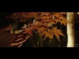Красивая осень в Киото