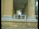 день города. паркур в Ставрополе
