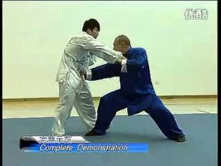 (Strike Techniques) 王战军 陈式太极拳实战技击之打法