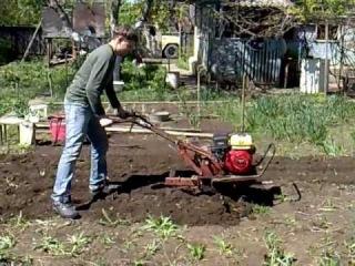 Гонки по огороду на мотоБлокЕ