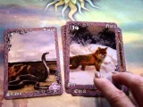 Lenormand Combinations for Beginners: The Snake