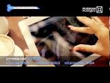 Раскрутка R'n'B & Hip-Hop, KReeD (эфир 09.03.2013) Гера Ноябрь и Darsn