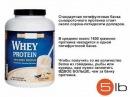 Протеин - Спортивное питание - Путеводитель: часть 2