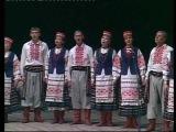 Українська народна пісня ЗЕЛЕНЕ ЛИСТЯ, БІЛІ КАШТАНИ