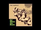 DJ Mitsu the beats & Fat Loop - 93 Till Infinity (Loop Amplitude)