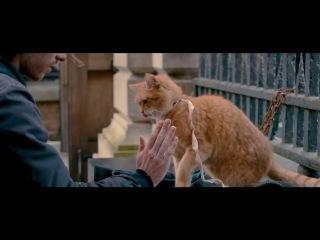 Уличный кот по кличке Боб A Street Cat Named Bob русская озвучка