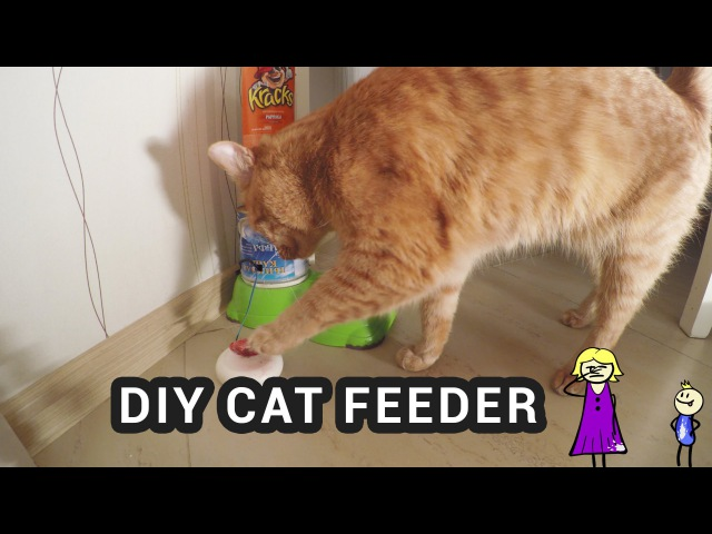 DIY ARDUINO CAT FEEDER – cat pushes the button to get food