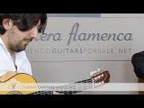 Antonio Rey &amp Pedro Javier Gonz