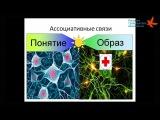 Андрей Егоров. Применение интеллект-карт