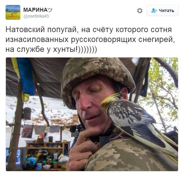 Боевики обстреляли Марьинку: разрушено 8 зданий - Цензор.НЕТ 3731