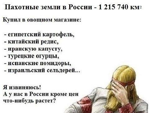почему в России не хотят заниматься предпринимательством
