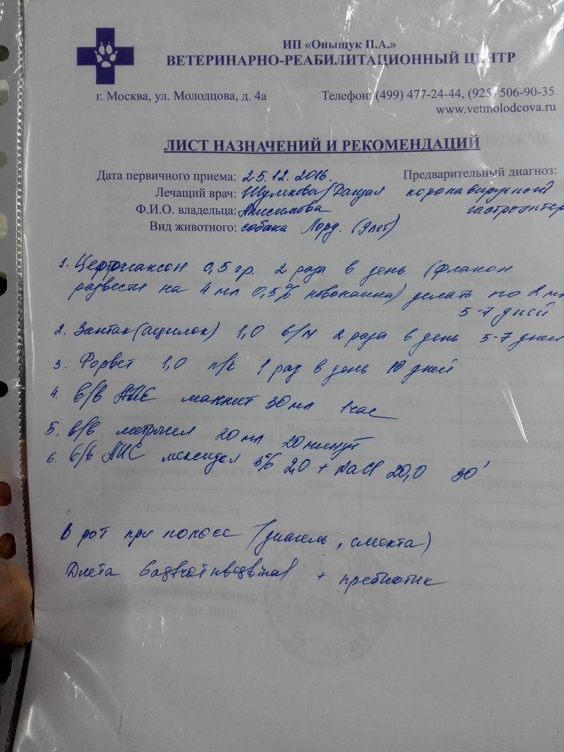 Москва, Лорд, кобель 17 Дек 2007 - Страница 3 PFgRFEA0A78