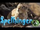 Охотимся на главу боевых леммингов - [ArcheAge 2.9] SpellsingerЧародей