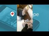 Свежее видео поем и битуем на заказ 2 от Сара Окс