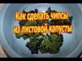 Как сделать чипсы из листовой капустыHow to make KALE CHIPS