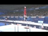 ЧМ 2011. Индивидуальное многоборье. Кодзи Ямамуро - параллельные брусья