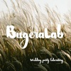 BugeraLab - laboratory of wedding party