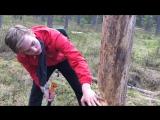 Рубим дерево(ч2) Мат, насилие и боль