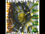Ziggy Marley - New Love
