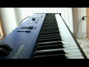 Rammstein - Du Hast Live version only on keyboard with all original samples Oberheim MC 1000