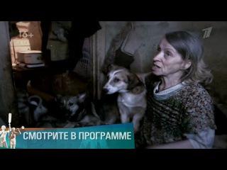 Мужское - Женское. Собаки Павловой (14.09.2016)