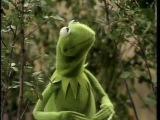 The Muppet Show Kermit -