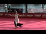 OEC 2014 - Dogdance Freestyle - Sandra  Lizzy