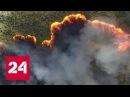 Эковахта Гринпис погорела экологов обвинили в пожарах на Кубани